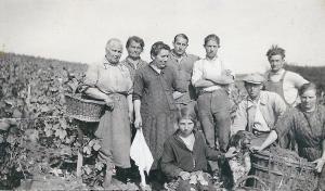 photo famille